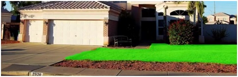 front yard green